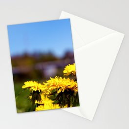 Concept flora . Dandelions in a field Stationery Cards