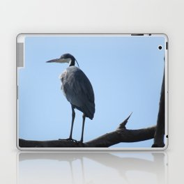 Great Blue Heron with a bird's eye view Laptop & iPad Skin