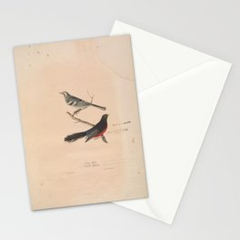 JP Giroud - North American birds (1841) - Black-Throated Gray Warbler & Red-Bellied Redstart Stationery Cards