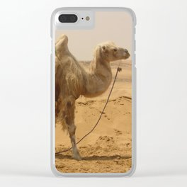 Camel in the desert Clear iPhone Case