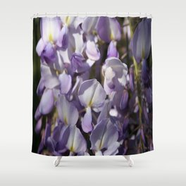 Close Up Of Lavender Wisteria Blossom Shower Curtain