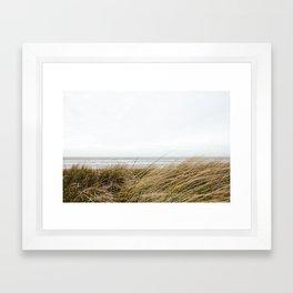 Beach Grass Framed Art Print
