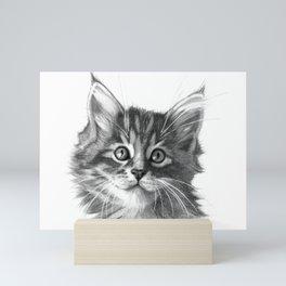 Maine Coon kitten G114 Mini Art Print