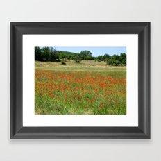 Poppies in Provence, France Framed Art Print
