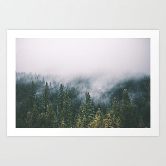 Forest Fog XI Art Print