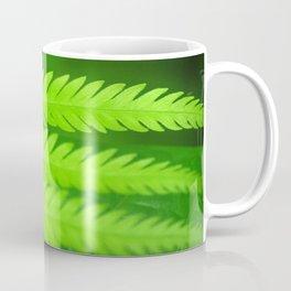 a green Fern Coffee Mug