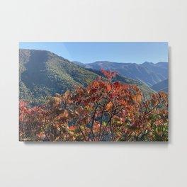 Autumn colors of Lapege Metal Print