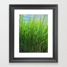 Wheat Grass in Motion Framed Art Print