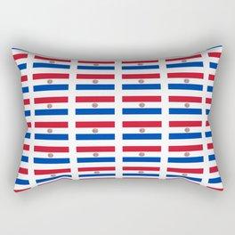 flag of paraguay 2 -paraguyan,asuncion,spanish, south america, latin america,pan flute,coffee,forest Rectangular Pillow