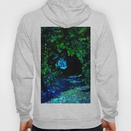 Enchanted Forest Path Hoody