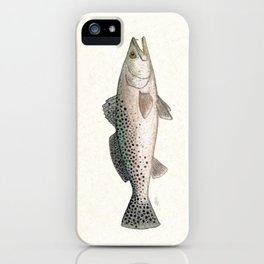 """Spotted Sea Trout"" by Amber Marine - Cynoscion nebulosus ~Watercolor Illustration, (Copyright 2013) iPhone Case"