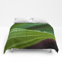 Three little drops Comforters