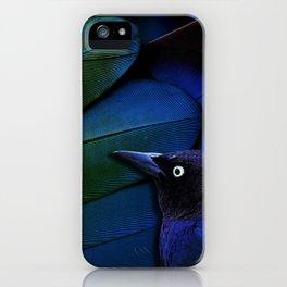 Grackle theme: Black, blue, green iPhone Case