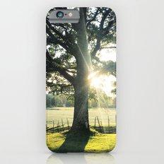 TIARAH Slim Case iPhone 6s
