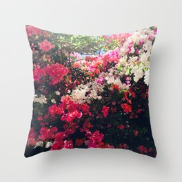 Bougainvillea of South Africa Throw Pillow