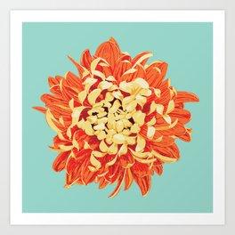 Chrysanthemum (Part of a Triptych) Art Print