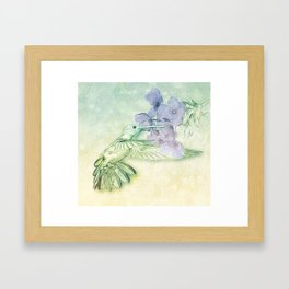 Hummingbird Kisses Framed Art Print