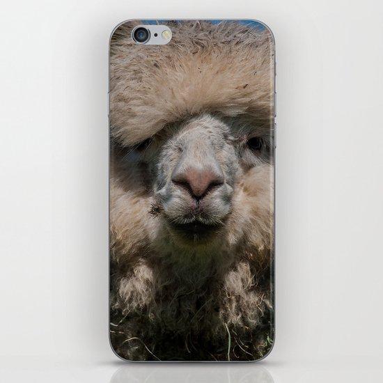 AL PACONE iPhone & iPod Skin