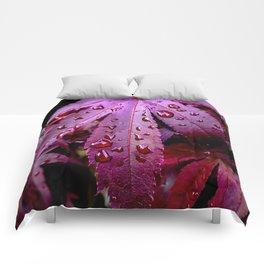 Lingering Rain Comforters