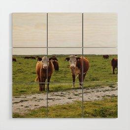 California Cows Wood Wall Art