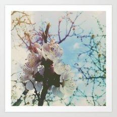 tender flowers Art Print