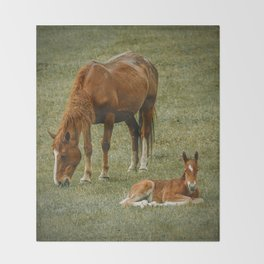 Horse And Foal Throw Blanket