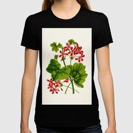 Joy Leaved Geranium Vintage Scientific Botanical Flower Illustration Hand Drawn Art T-shirt