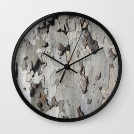 London plane tree Wall Clock