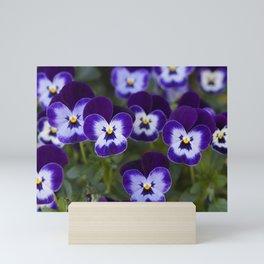 Purple Pansies Mini Art Print