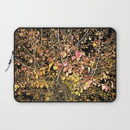 Change In The Night Laptop Sleeve