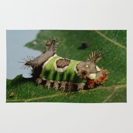 Caterpillar Eating a Leaf Rug