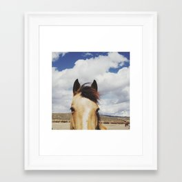 Cloudy Horse Head Framed Art Print