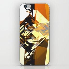 9818 iPhone Skin