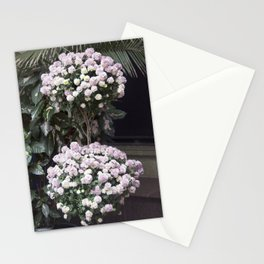 Longwood Gardens Autumn Series 209 Stationery Cards