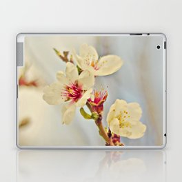 Almond Blossoms in the Wind Laptop & iPad Skin