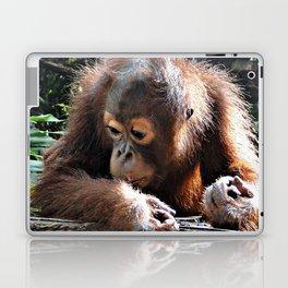 Orang Baby 1015P Laptop & iPad Skin