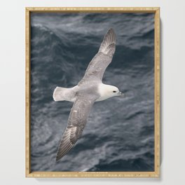 Seagull flying over Arctic Ocean Serving Tray