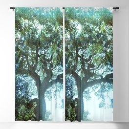 Ramona Oak Tree Blackout Curtain