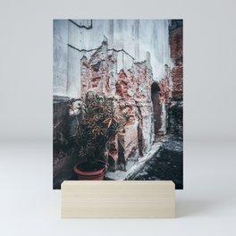 Plant in the pot Mini Art Print