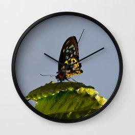 The Queen Alexandra Bird Wing Butterfly by Teresa Thompson Wall Clock