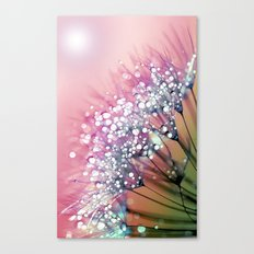 rainbow dandelion Canvas Print