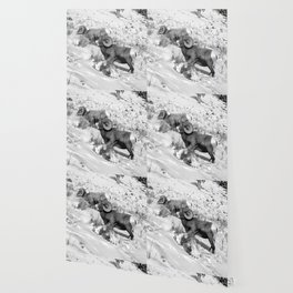 2 Amazing Bighorn Sheep in Black and White by OLena Art for #Society6 Wallpaper