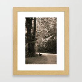 No one waiting... Framed Art Print