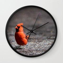 Cardinal bird in the park Wall Clock