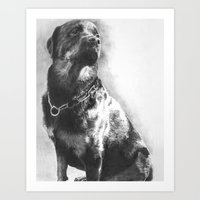 rottweiler Art Prints featuring Rottweiler by onlypencil