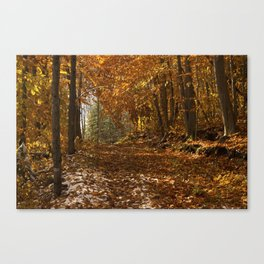 Fall Canada Canvas Print