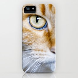 Portrait of a cat with big eyes. iPhone Case