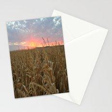 Corn Maze Sunset Stationery Cards