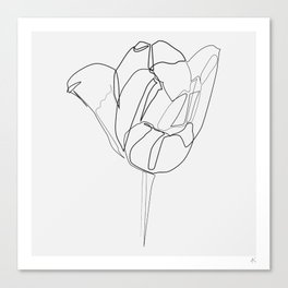 """Botanical Collection"" - Tulip Flower Print Canvas Print"