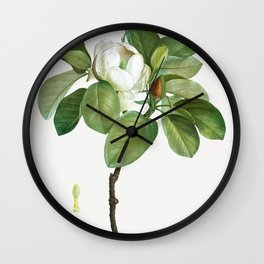 Magnolia (magnolia glauca) from Traite des Arbres et Arbustes que lon cultive en France en pleine te Wall Clock